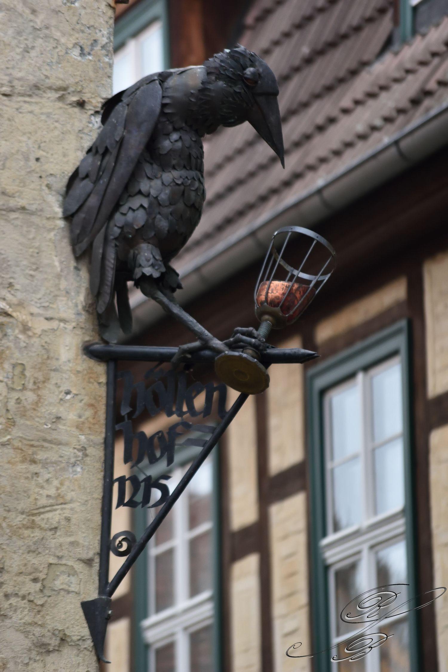 FT_Harz_2016_001