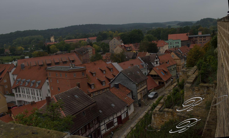 FT_Harz_2016_015