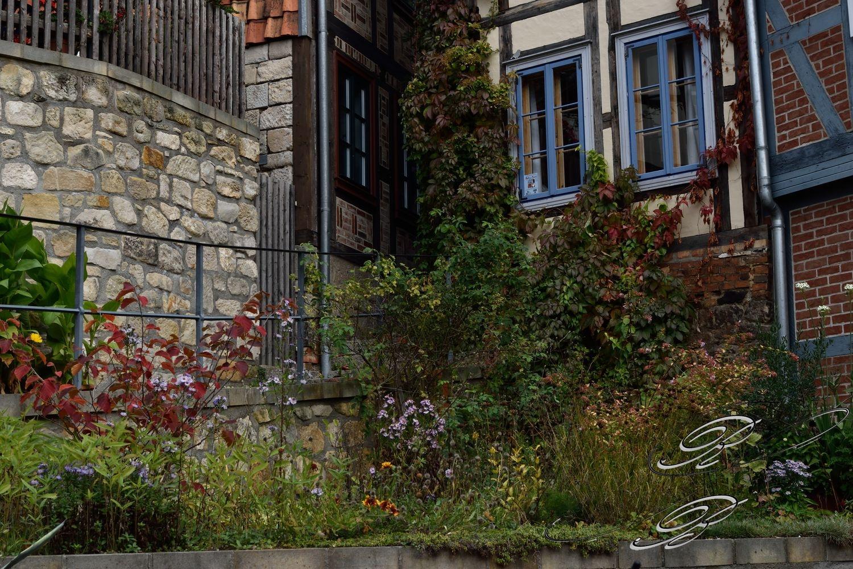 FT_Harz_2016_062