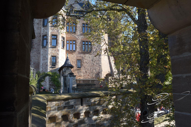 FT_Harz_2016_152